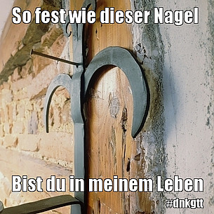 Bild /fileadmin/user_upload/meme/5b0b2a0f010fc-741.jpg fehlt